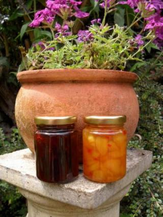 Two Jams in Garden